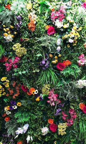 Bespoke flower wall and foliagehire
