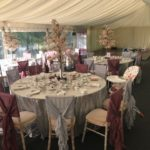Wedding blossom tree hire peterborough