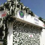 Pimms Flower wall Wimbledon 2018